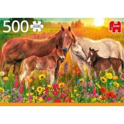 Kone na lúke