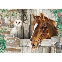 Kôň a sova