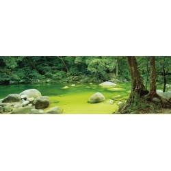 Rieka v pralese - PANORAMATICKÉ PUZZLE