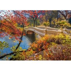 Prechádzka v Central parku