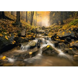 Kúzelný potok