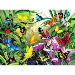 Tropické motýle