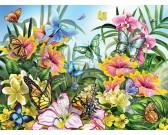 Záhrada plná farieb