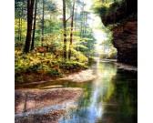 Tichý les