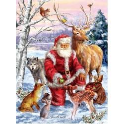 Santa Klaus a zvieratká