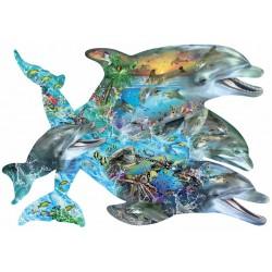 Spev delfínov
