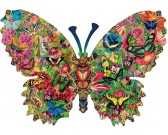 Motýľ - svet motýľov