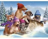 Zimná zábava - XXL PUZZLE