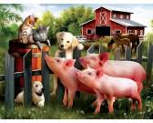Zvieraci priatelia - XXL PUZZLE