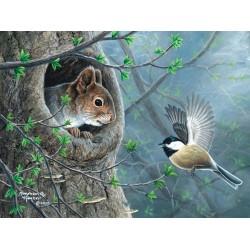 Veverička a sýkorka - XXL PUZZLE
