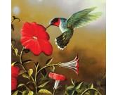 Kolibrík s červeným kvetom - XXL