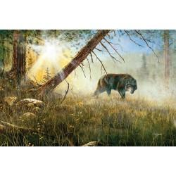 Vlk na love