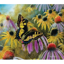 Motýľ medzi kvetmi
