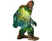 Lesný muž