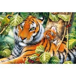 Dva tigre