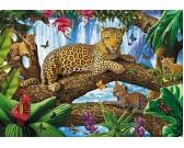 Leopardy na strome