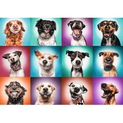 Srandovné psie portréty