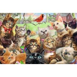 Zvedavé mačičky - DETSKÉ PUZZLE