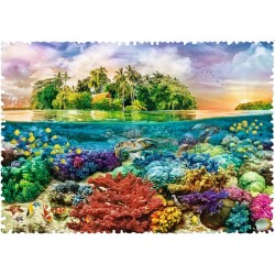 Korálový útes